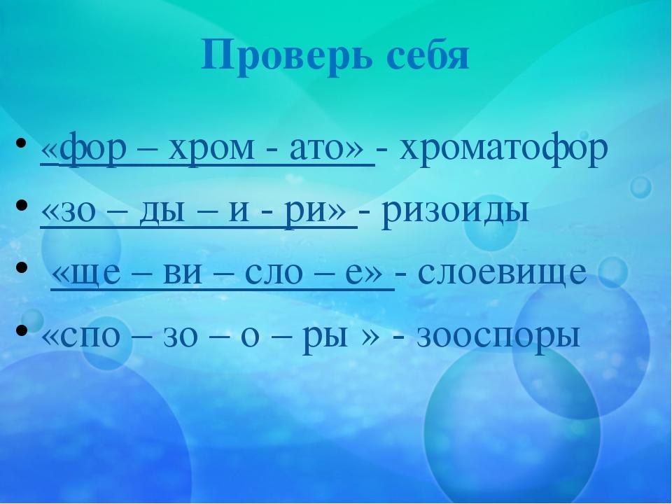 Проверь себя «фор – хром - ато» - хроматофор «зо – ды – и - ри» - ризоиды «ще...