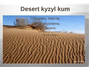 Desert kyzyl kum