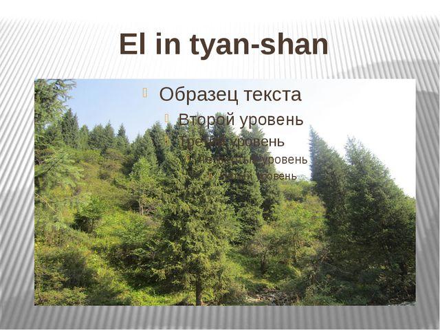 El in tyan-shan