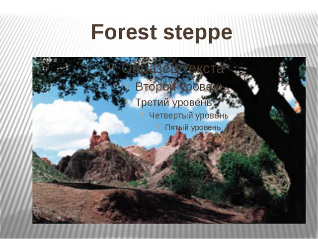 Forest steppe