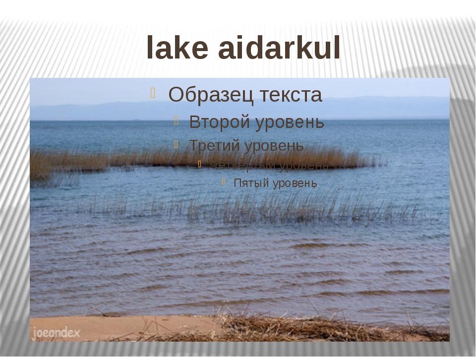 lake aidarkul