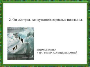 2. Он смотрел, как купаются взрослые пингвины. ВНИМАТЕЛЬНО У НАГРЕТЫХ СОЛНЦЕМ