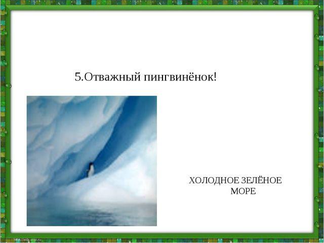 5.Отважный пингвинёнок! ХОЛОДНОЕ ЗЕЛЁНОЕ МОРЕ