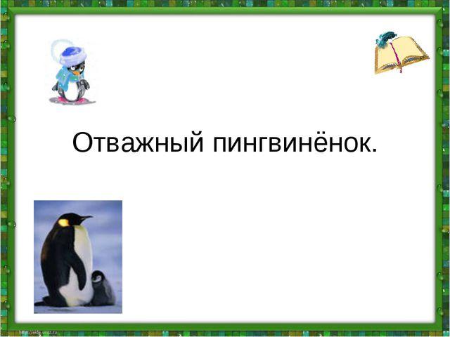 Отважный пингвинёнок.