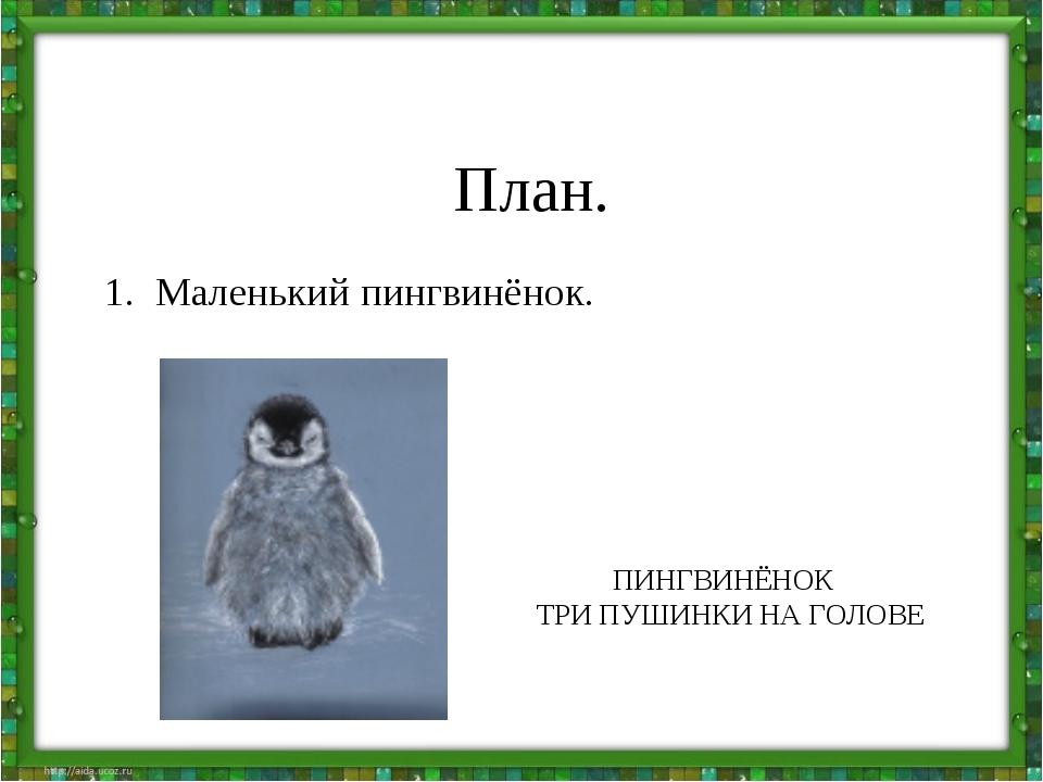 План. 1. Маленький пингвинёнок. ПИНГВИНЁНОК ТРИ ПУШИНКИ НА ГОЛОВЕ