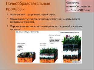 Почвообразовательные процессы Выветривание – разрушение горных пород. Образов