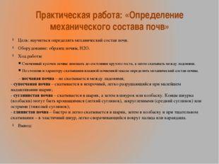 Практическая работа: «Определение механического состава почв» Цель: научиться