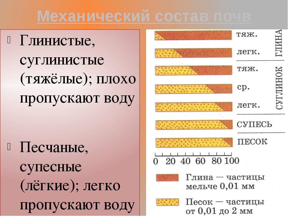 Механический состав почв Глинистые, суглинистые (тяжёлые); плохо пропускают в...
