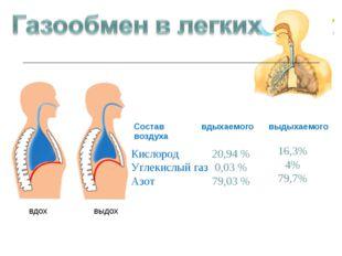 вдох выдох Кислород Углекислый газ Азот 20,94 % 0,03 % 79,03 % 16,3% 4% 79,7%