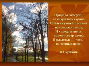Природа замерла, нахмурилась сурово Поблекнувшей листвой покрылася земля, И х