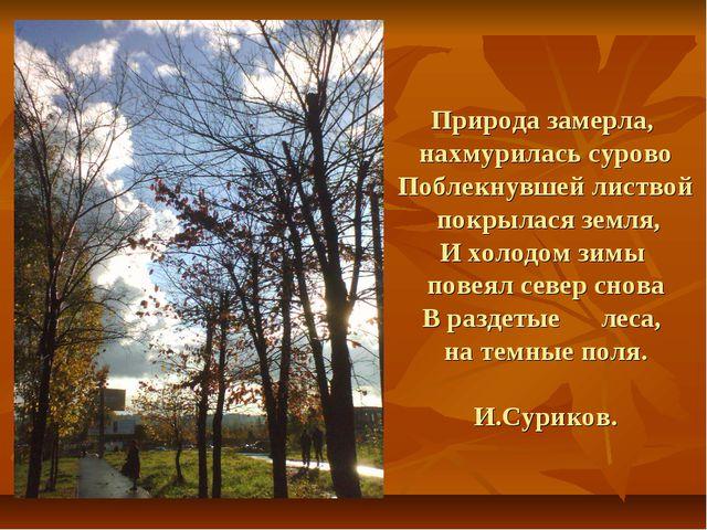 Природа замерла, нахмурилась сурово Поблекнувшей листвой покрылася земля, И х...