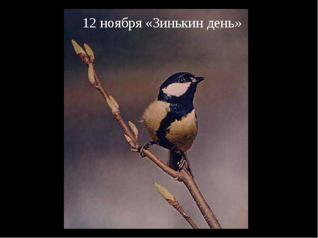 12 ноября «Зинькин день»
