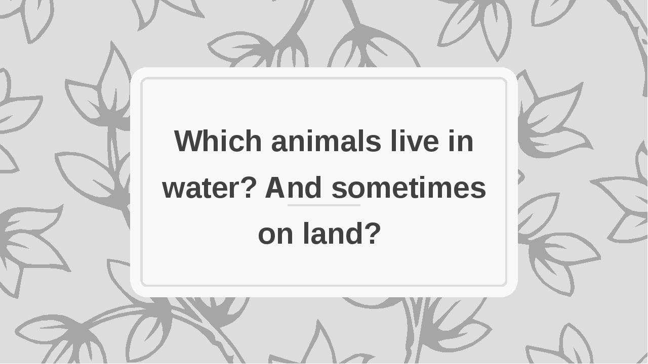 Which animals live in water? And sometimes on land?