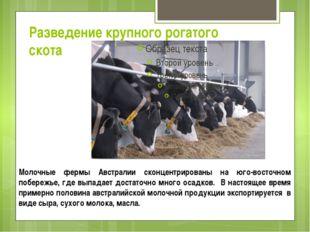 Разведение крупного рогатого скота Молочные фермы Австралии сконцентрированы