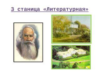 3 станица «Литературная»
