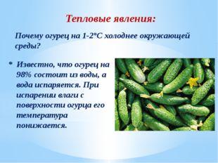 Тепловые явления: Почему огурец на 1-2°С холоднее окружающей среды? * Известн