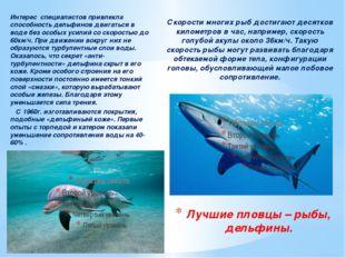 Интерес специалистов привлекла способность дельфинов двигаться в воде без осо