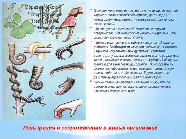 Роль трения и сопротивления в живых организмах Известно, что в технике для ум...