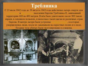 Треблинка С 23 июля 1942 года до 19 августа 1943 года действовал лагерь смерт
