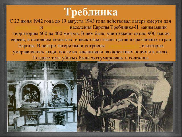 Треблинка С 23 июля 1942 года до 19 августа 1943 года действовал лагерь смерт...