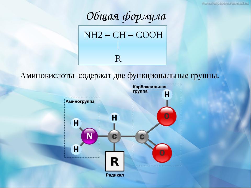 Общая формула NH2 – CH – COOH R Аминокислоты содержат две функциональные груп...