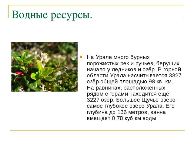Водные ресурсы. На Урале много бурных порожистых рек и ручьев, берущих начало...