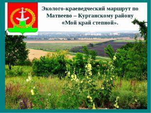 Эколого-краеведческий маршрут по Матвеево – Курганскому району «Мой край степ