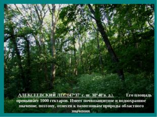АЛЕКСЕЕВСКий ЛЕС (47°37′ с. ш. 38°48′в. д.). Его площадь превышает 1000 гекта