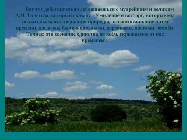 Вот тут действительно соглашаешься с мудрейшим и великим А.Н. Толстым, которы...