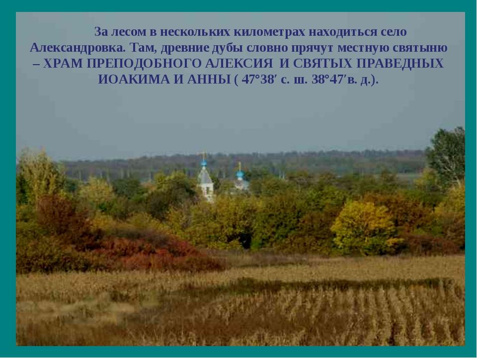 За лесом в нескольких километрах находиться село Александровка. Там, древние...