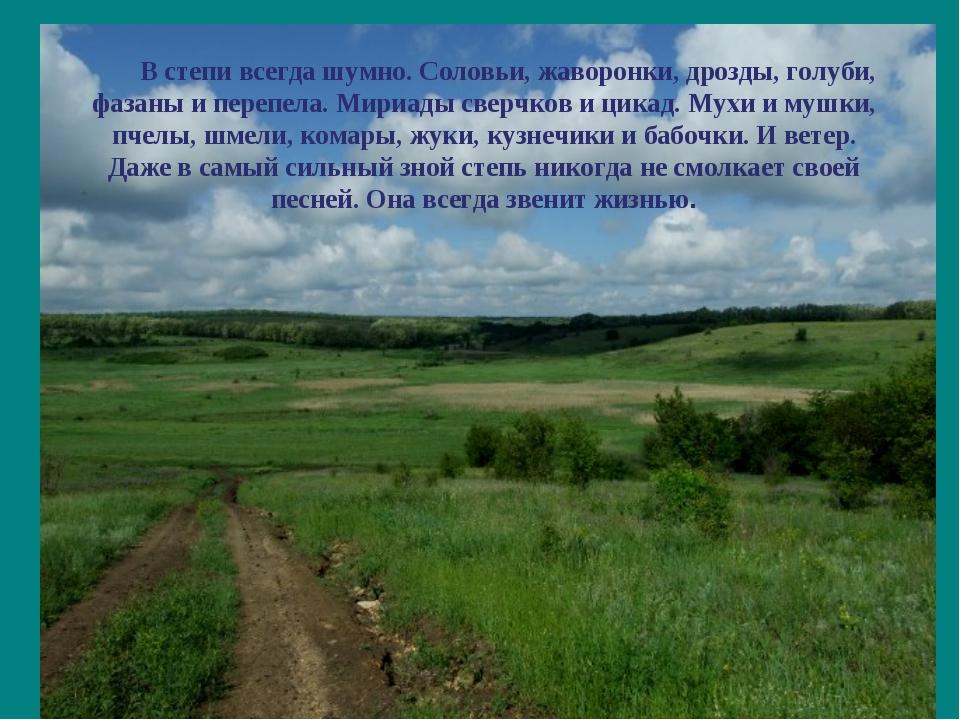 В степи всегда шумно. Соловьи, жаворонки, дрозды, голуби, фазаны и перепела....