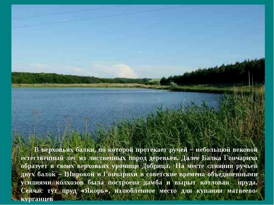 В верховьях балки, по которой протекает ручей – небольшой вековой естественны...