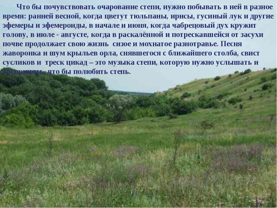 Что бы почувствовать очарование степи, нужно побывать в ней в разное время: р...