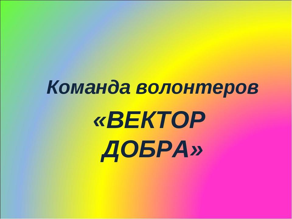 Команда волонтеров «ВЕКТОР ДОБРА»