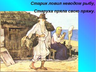 Старик ловил неводом рыбу, Старуха пряла свою пряжу.