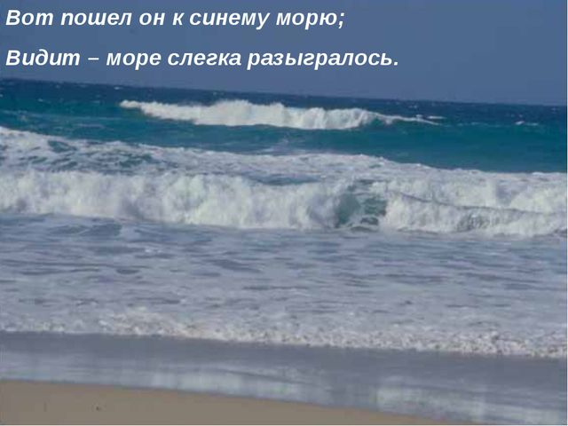 Вот пошел он к синему морю; Видит – море слегка разыгралось.