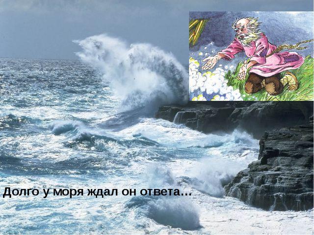 Долго у моря ждал он ответа…