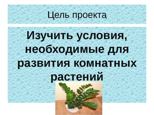 Цель проекта Изучить условия, необходимые для развития комнатных растений