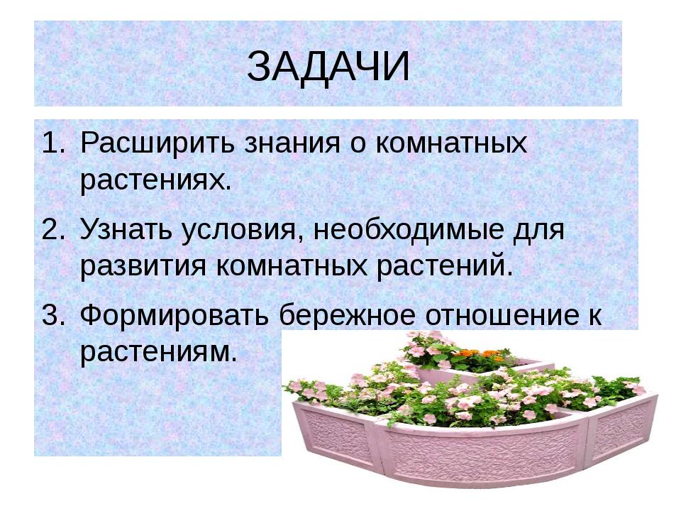 ЗАДАЧИ Расширить знания о комнатных растениях. Узнать условия, необходимые дл...