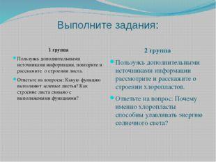 Выполните задания: 1 группа Пользуясь дополнительными источниками информации,