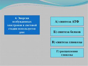 4. Энергия возбужденных электронов в световой стадии используется для: А) син