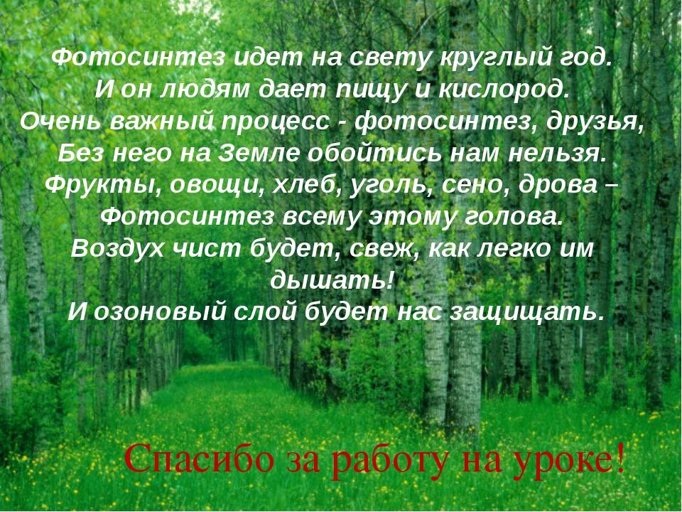 Фотосинтез идет на свету круглый год. И он людям дает пищу и кислород. Очень...