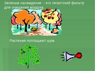 Зеленые насаждения – это гигантский фильтр для очищения воздуха. Растения пог