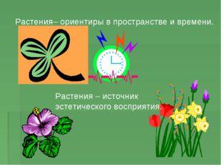 Растения– ориентиры в пространстве и времени. Растения – источник эстетическо