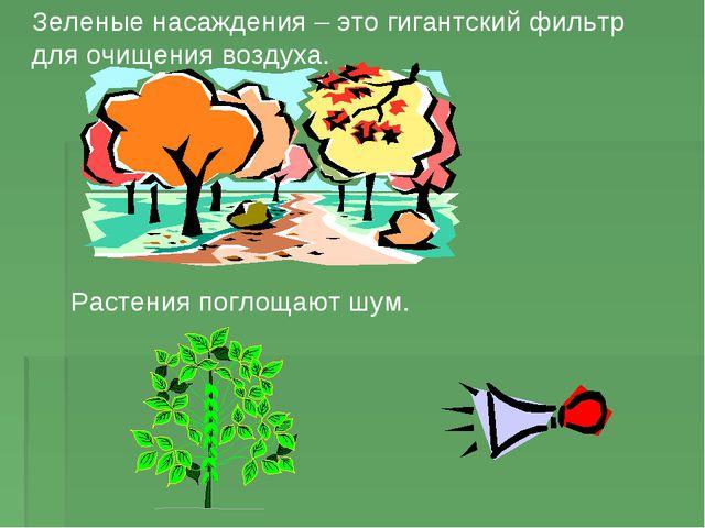 Зеленые насаждения – это гигантский фильтр для очищения воздуха. Растения пог...