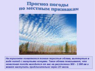 На горизонте появляются тонкие перистые облака, вытянутые в виде нитей с загн