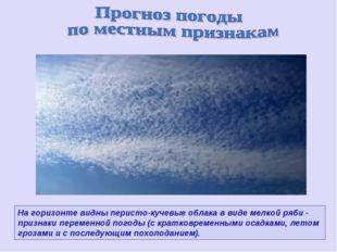 На горизонте видны перисто-кучевые облака в виде мелкой ряби - признаки перем