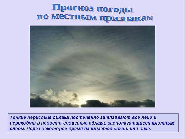 Тонкие перистые облака постепенно затягивают все небо и переходят в перисто-с...