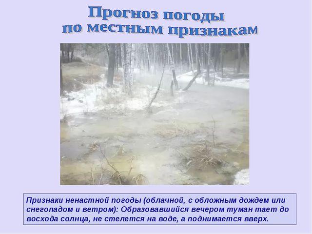 Признаки ненастной погоды (облачной, с обложным дождем или снегопадом и ветро...