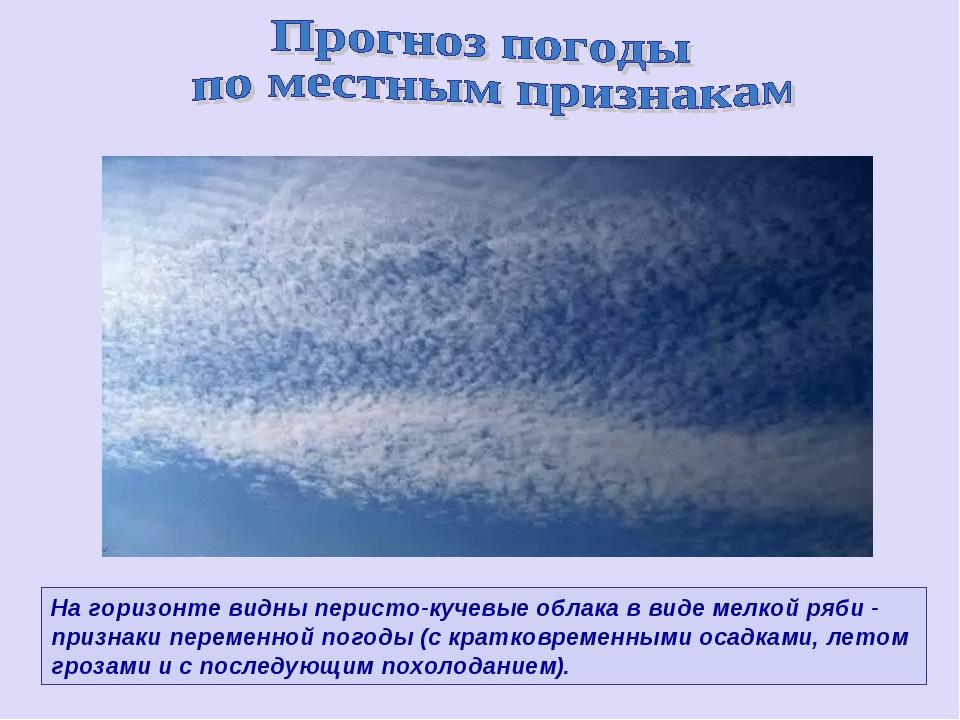 На горизонте видны перисто-кучевые облака в виде мелкой ряби - признаки перем...